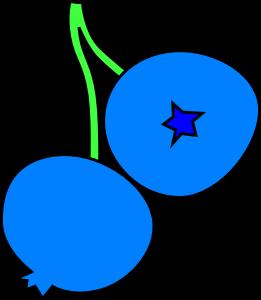 blueberry-clip-art-1